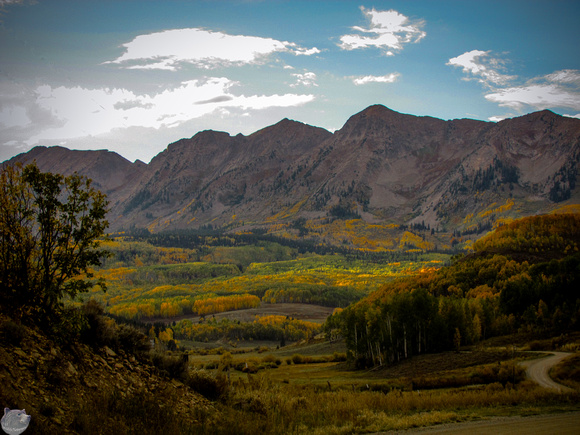 Colorado Fall Colors 11